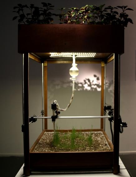 Eisenia, maquina impresion organica